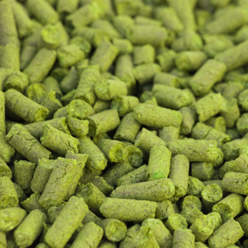 Northern Brewer Hops